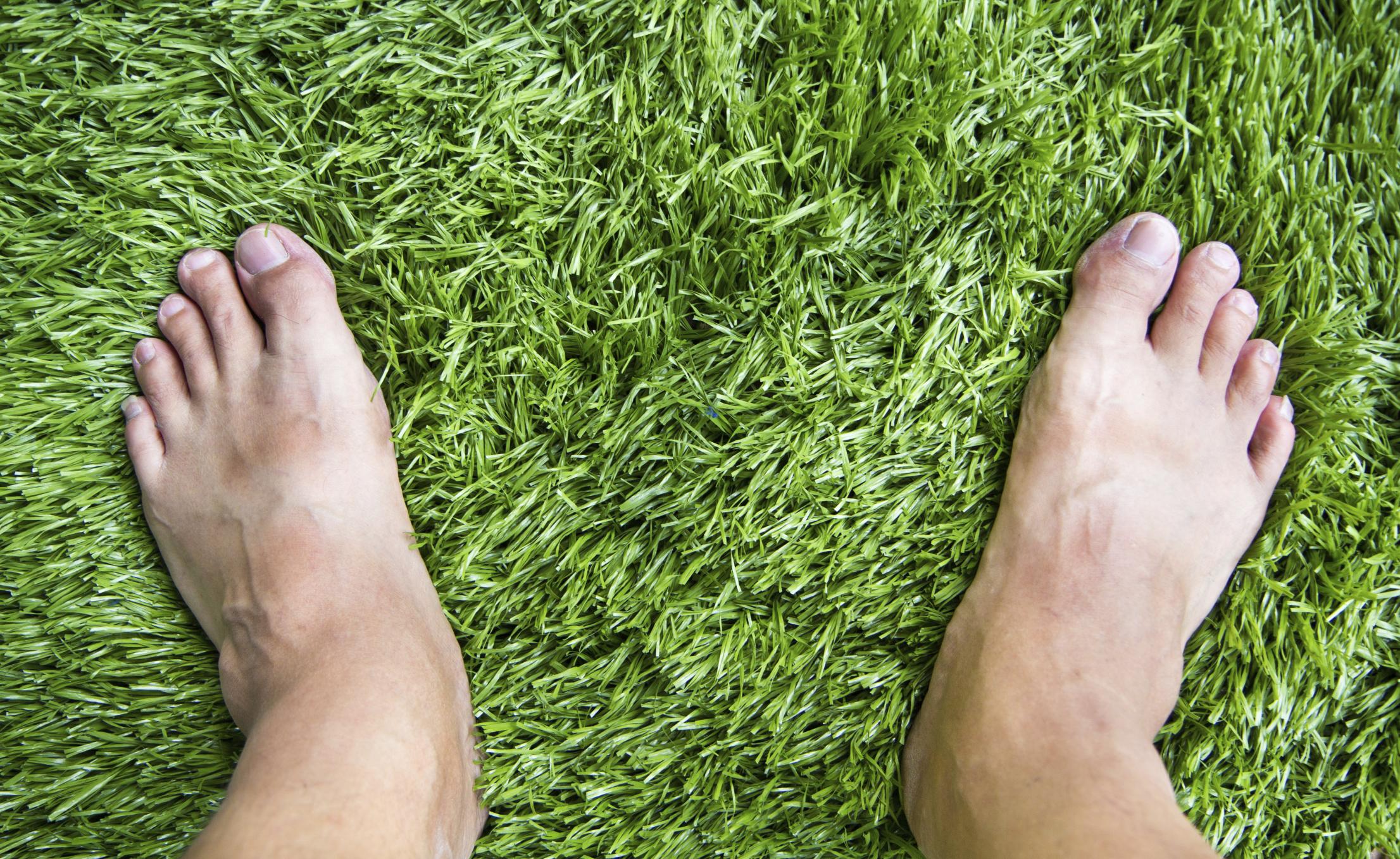 כיצד לבחור דשא סינטטי איכותי?