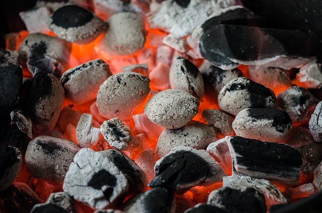 האם כדאי גריל פחם עץ או גריל חשמל
